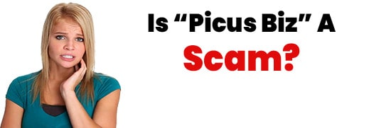 Is Picus Biz A Scam or Pyramid Scheme