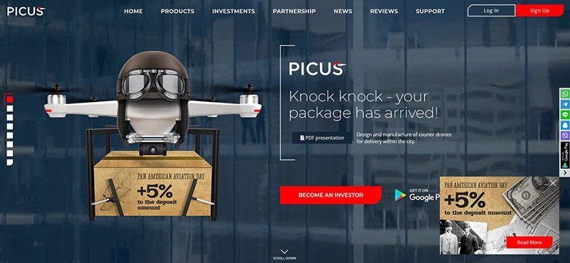 What Is Picus Biz