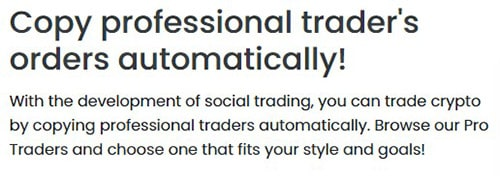 Copy Professional Traders Automatically