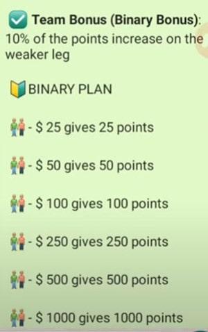 GreenGold Binary Commission Chart